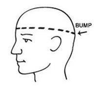 Head Measuring Display
